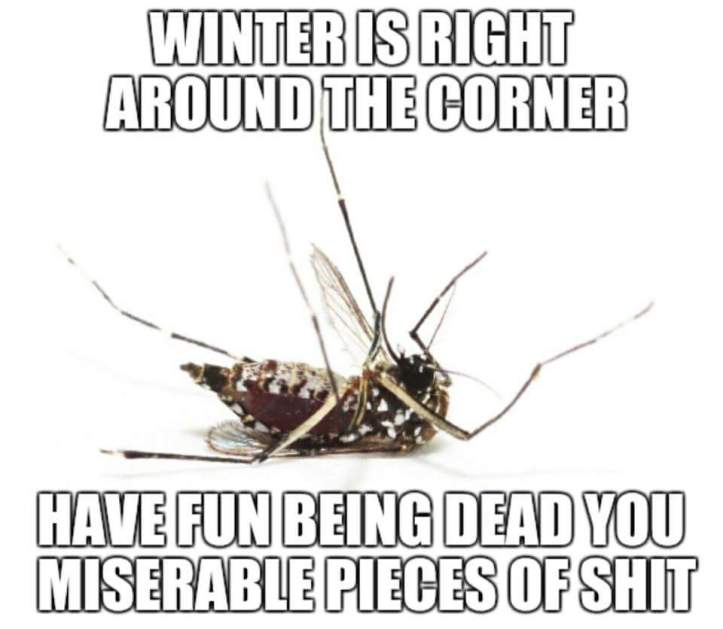 Winter is coming - Imgur